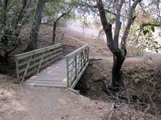 Bridge on Musch Trail