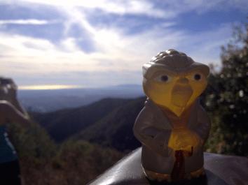Yoda on Manzanita Ridge