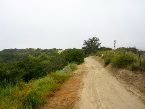 Nearing the high point of the trail
