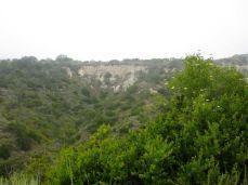 Scenic coastal hills