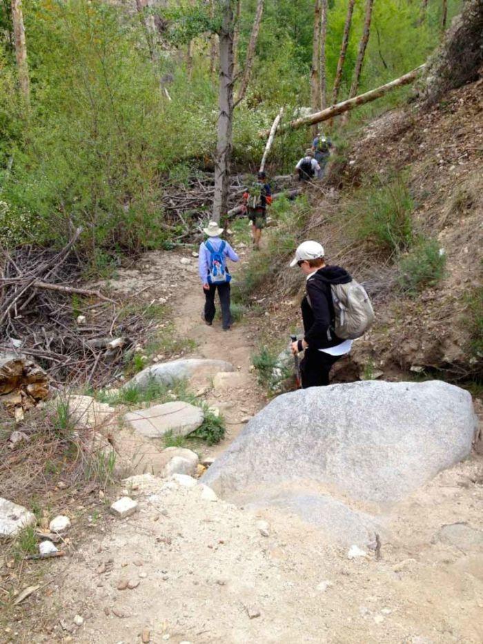 Down Toward the Creek