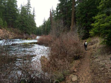 The Metolius River Trail