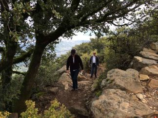 My mom and my wife hiking up the final switchbacks to Mt. Tam