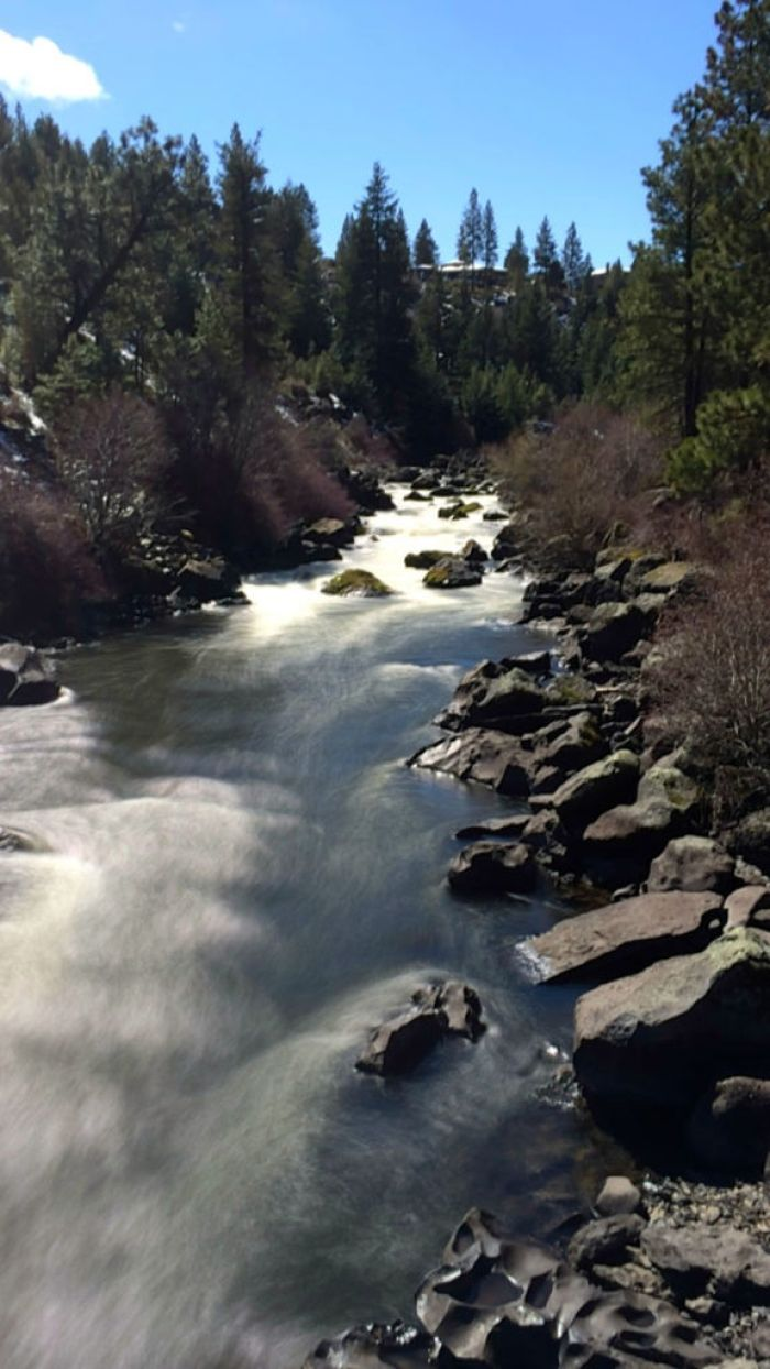 On the Deschutes River Trail