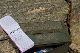 San Bernardino Peak log. Photo credit: Emily Doti
