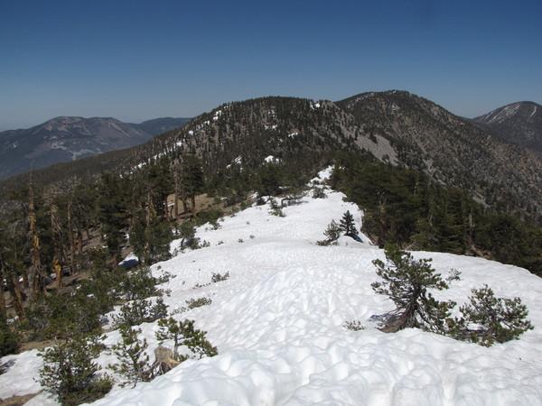 Snow on San Bernardino Peak