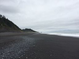 The End (of the Lost Coast) is Near