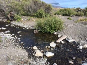 Spanish Flat Creek