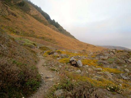 Twilight on the Lost Coast Trail