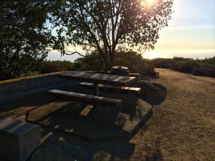 One of a Number of Picnic Tables