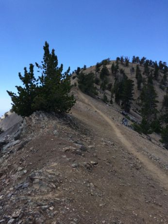Trail skirts the ridge