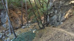 Woodsy Gabrielino Trail