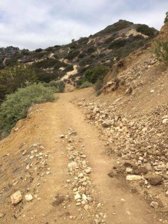 Head up the Rim Trail