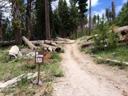 The trail to Reds Meadow