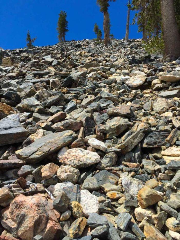 Boulder Scramble up Shields Peak
