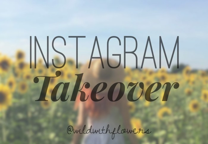 The SoCal Hiker Instagram feed is taken over by @wildwithflowers