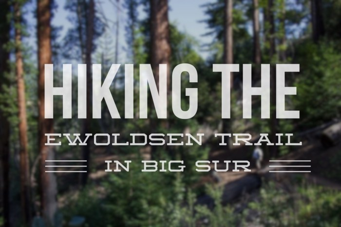 Hiking-the-Ewoldsen-Trail-in-Big-Sur