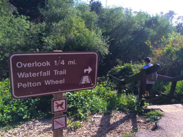 The Falls Trail takes you to epic McWay Falls in Big Sur