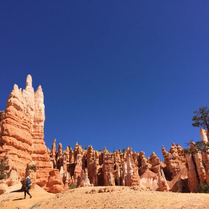 Lovely Bryce Canyon National Park in Utah