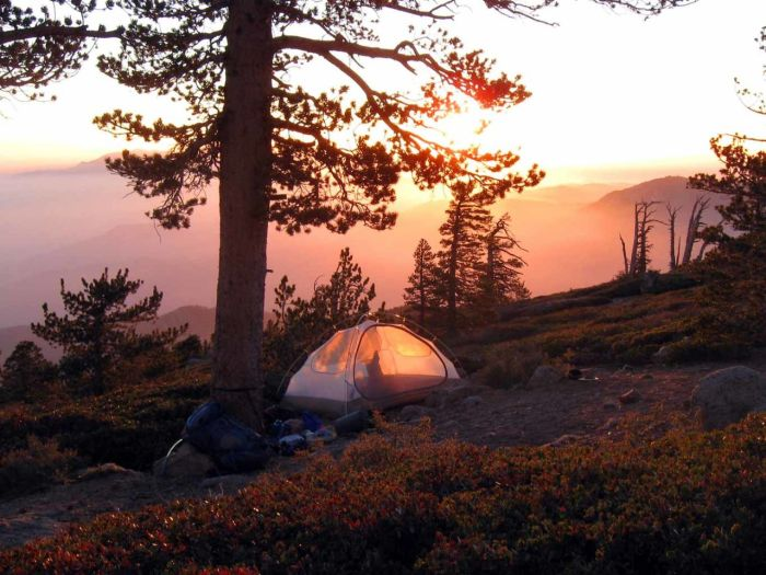 Photo: Mitch Barrie