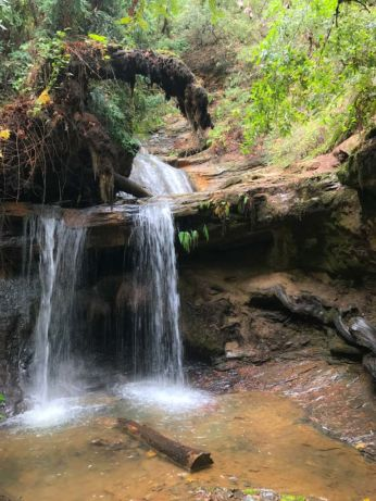 Bottom of a multi-tiered waterfall on Berry Creek