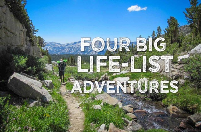 Four Big Life-List Adventures