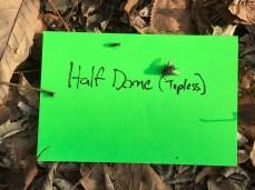 Half Dome (topless)