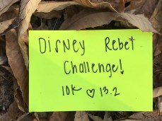Disney Rebel Challenge