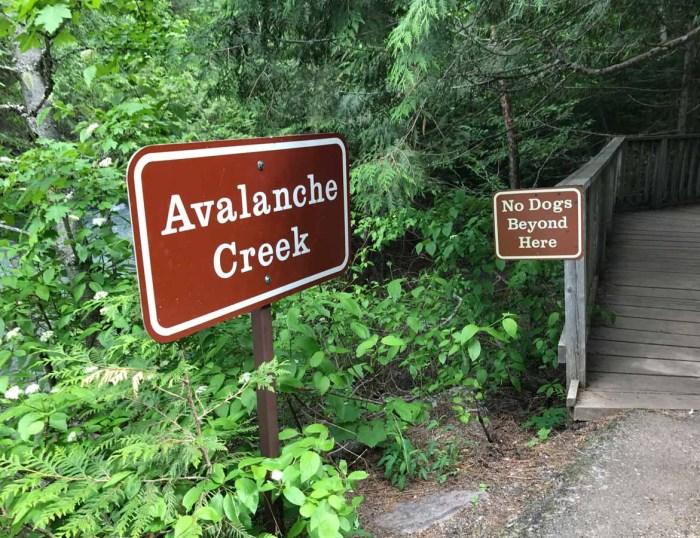 Avalanche Lake trailhead