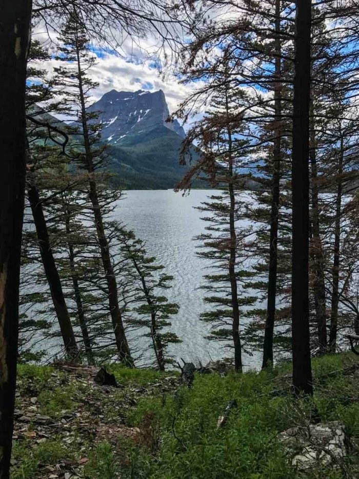 Saint Mary Lake through the trees