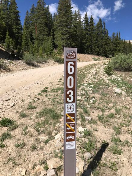 Forest Service Road 603