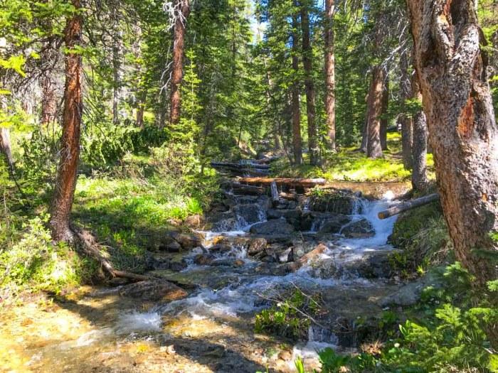 Unnamed Creek where I turned off trail towards Birthday Peak