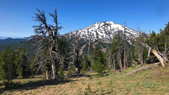 Mt Bachelor rises into view on Tumalo Mountain trail