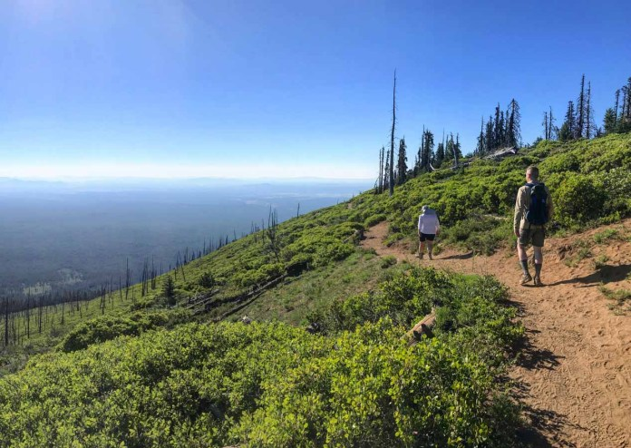 Looking East on the Black Butte Trail