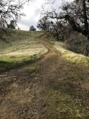 Trail toward Maggies Half Acre