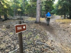 This to-the-point sign shows the way up the Forsee Creek Trail.