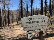 The new sign at the boundary of the San Gorgonio Wilderness on the South Fork Trail