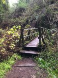 One of the wood bridges that criss-cross the ravine