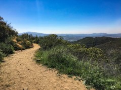 Views of Escondido from the Sage Trail