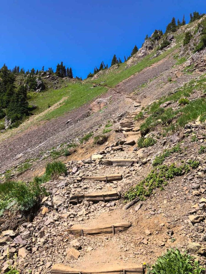The trail to the notch