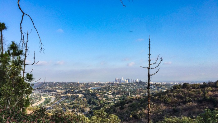 Downtown LA from the Coolidge Trail