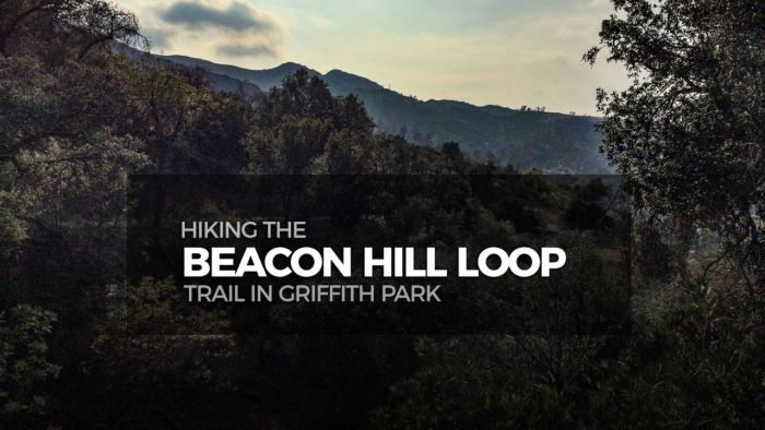 Hike the Beacon Hill Loop Trail in Griffith Park
