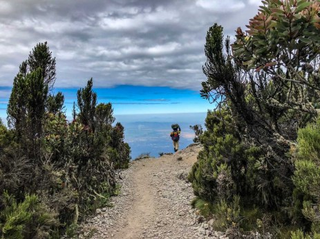 Heading down Kilimanjaro