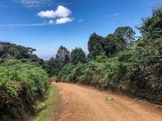 Green near the base of Kilimanjaro