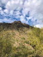Looking up at Piestewa Peak