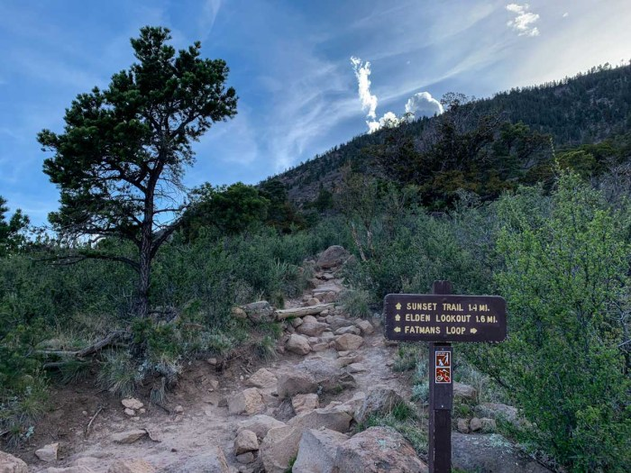 The trail to Mt Elden gets steeper here