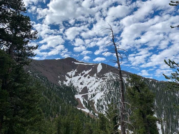 View of Agassiz Peak