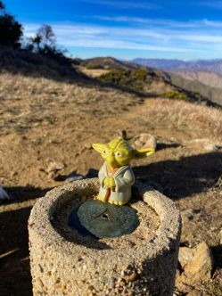 Yoda on Volcan Mountain