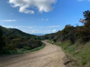 Hiking trail in Griffith Park