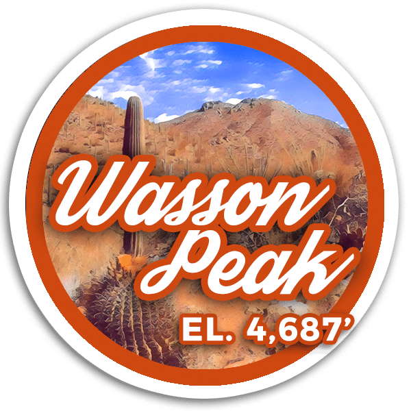 Wasson Peak